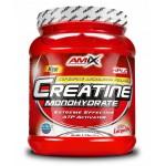 Κρεατίνη Μονοϋδρική Creatine Monohydrate Amix 500g