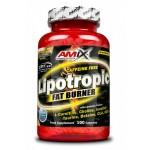 Λιποδιαλύτης Lipotropic Fat Burner Amix 100 κάψουλες